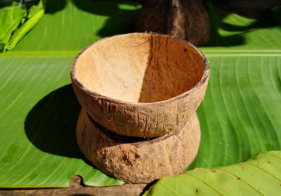 砂拉越热带雨林